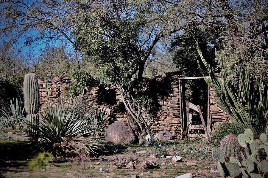 Day Trip Adventure: Black Canyon City