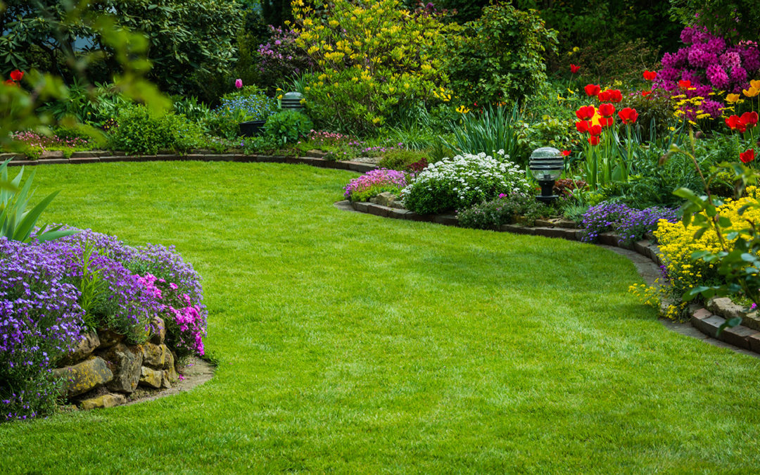 Your Yard: Waking from a Long Winter's Nap