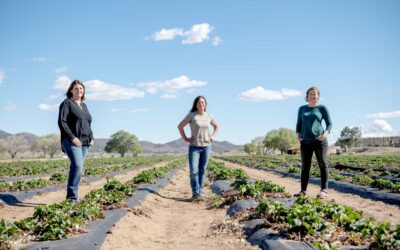 Local Farmers: Meet the Women Who Grow Our Food