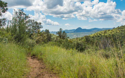 Share the Trails—and Enjoy Them!  The Prescott Circle Trail Mini Guide