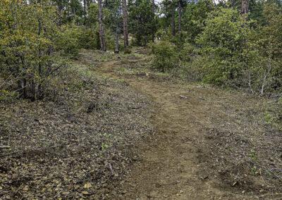 trail done copy