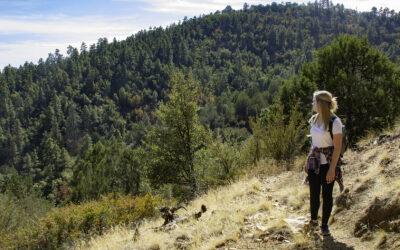 Mount Francis Adventure